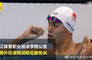 孙杨任浙江体职院训练处副处长,第一个在役携有处级职位的运动员