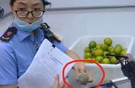 江苏一CoCo奶茶店查出腐烂水果,但未使用,市监局:正在调查