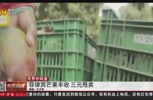 """菲律宾芒果泛滥,3元低价甩卖,数百万斤芒果成当地""""甜蜜负担"""""""