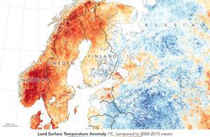 北极现30度罕见高温,大火烧到北冰洋沿岸!北极熊还过得下去吗?