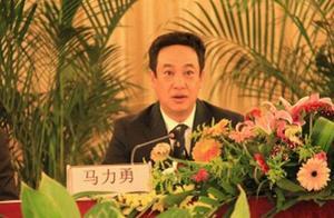 云南西双版纳州统战部原部长马力勇终审获刑七年