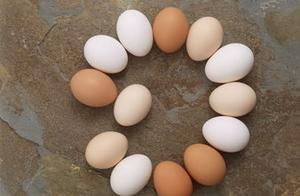 2019年5月29日全国鸡蛋价格