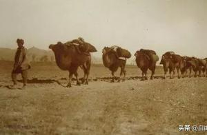 老包头有多牛?几千人的跨国贸易团队从这里出发财富传奇纵横欧亚