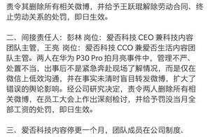 画风突变,彭林向华为道歉:一致对外,共度难关