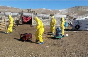 蒙古疑爆发鼠疫:2人死亡 100多人被隔离