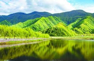 神农架大九湖高山湿地风光