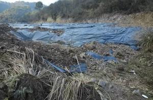 污泥处置企业弃万吨污泥不顾 责任人被追刑后环境谁来管?
