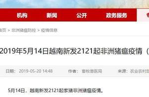 仅一天,越南新发2121起非洲猪瘟疫情