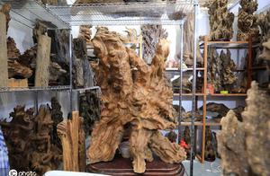 哈尔滨现天价木头,一块售价18万元,惊呆围观市民