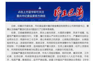 重慶糧食集團有限責任公司原黨委書記、 董事長王銀峰嚴重違紀違法被開除黨籍和公職