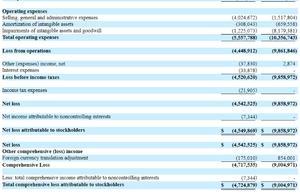 爱鸿森2019财年净亏损452万美元,近9成收入来自汽车交易及相关服务
