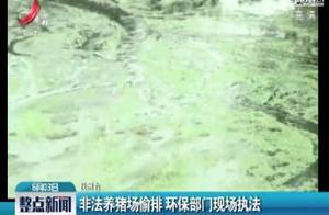 抚州:非法养猪场偷排 环保部门现场执法