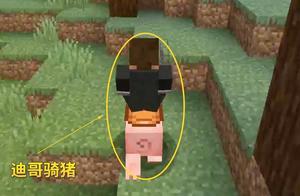 我的世界1.14联机51:村庄英雄骑猪,胡萝卜钓竿起大作用!