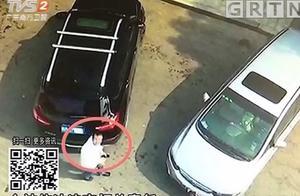 """""""螳臂当车""""!交警用无人机巡查时,违停司机竟用身体遮挡车牌"""