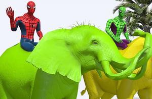 不准使用超能力哦,蜘蛛侠骑大象过河,看谁会掉下来~学颜色