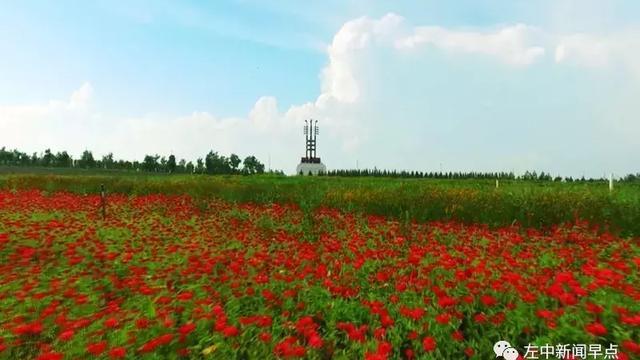 辽宁省北票市离内蒙古通辽市科左中旗(保康镇)有多远?