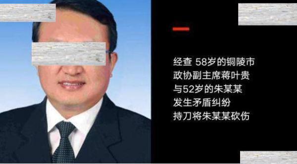 铜陵一政协副主席刺伤女子被批捕 受害者目前情况稳定