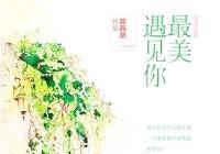 男主叫顾西爵女主叫苏小萌的重生小说谁知道这本小说的名字