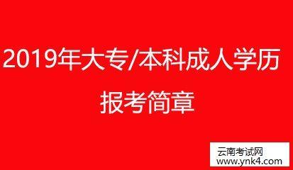 【技能大师在线培训平台 搜狐】云南成考网:2019年大专-本科成人学历提升报考简章