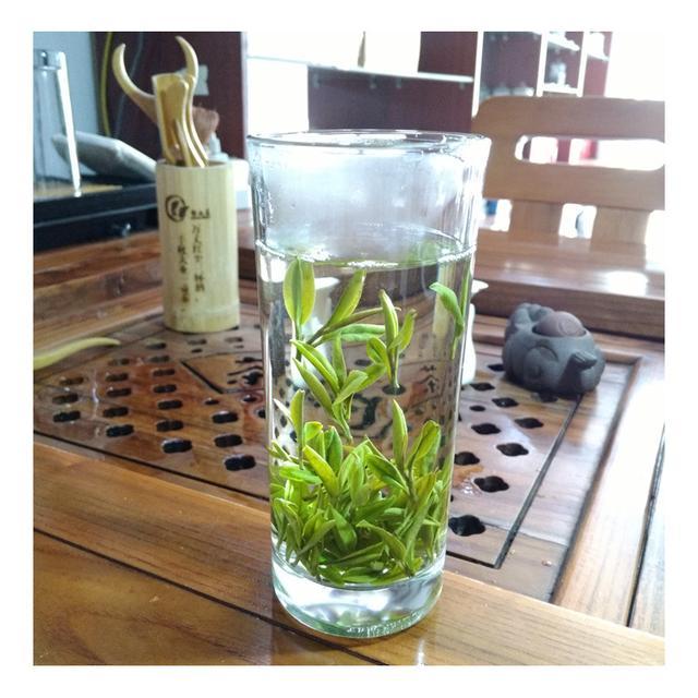 喝兰花茶又什么好处?