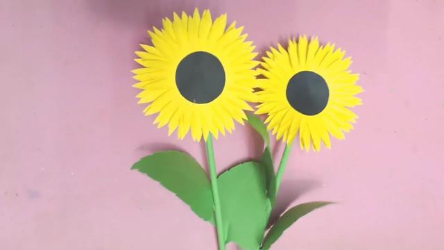 如何制作向日葵标本