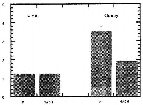 NADH对血压的变化