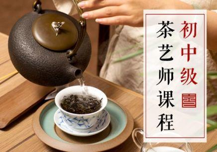 中级茶艺师培训考证
