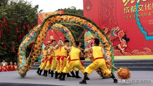 【后勤业务技能培训内容】千龙千狮在洛带古镇开舞,龙泉人民在家门口享文化盛宴!
