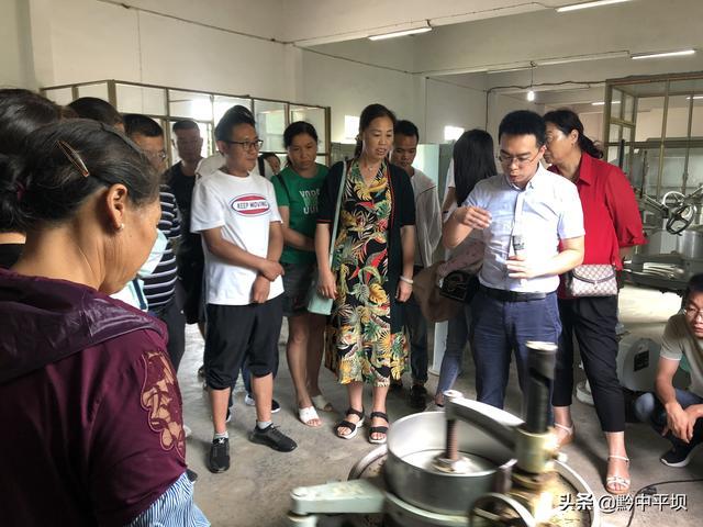 【幼儿园技能培训艺术剪纸】平坝举办茶叶加工实用技术培训
