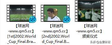 """回忆杀-足球经典战""""疫""""02年世界杯决赛 巴西vs德国-罗纳尔多梅开二度 国语 1080P 百度下载"""
