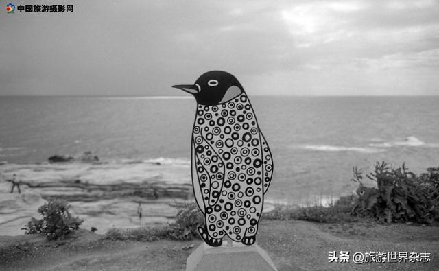 六月|一组日本和歌山的黑白照片