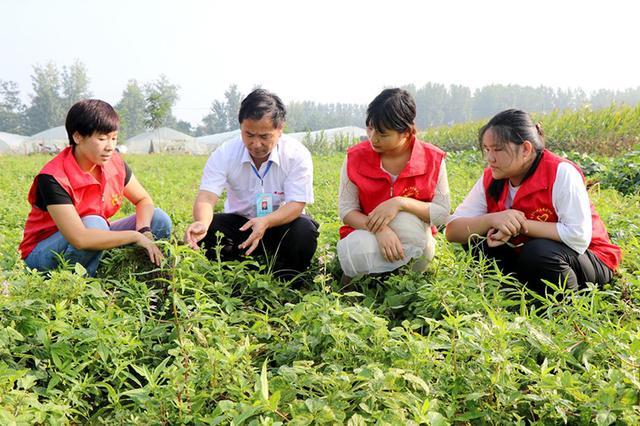 亳州市谯城区:发挥远教资源优势 持续推进乡村振兴