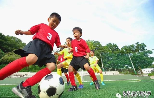 【开展运动风险管理培训技能培训】体育老师如何制定教学计划及范文