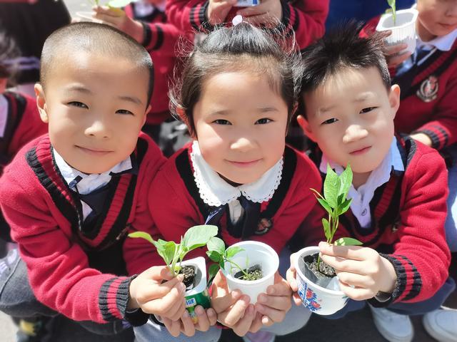 【麻醉医师的定期技能培训】领苗啦!哈尔滨中小学生远程同步种植活动启幕