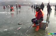 农村小伙实拍北方冬季冰捕,场地能有多大鱼?看完不淡定了