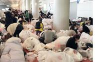 直击韩国机场的中国代购大军,场面令人瞠目结舌,化妆品堆成山