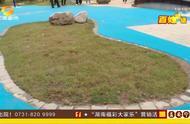 """""""住在公园""""?业主们纷纷购新房,看到塑料""""人工湖""""后哭笑不得"""
