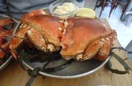 """螃蟹当中的贵族""""面包蟹"""",很多食客看了都流口水,可是很难捕捉"""