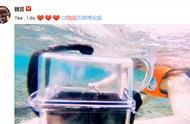 魏晨求婚成功,海中浮潜送上钻戒向女友浪漫求婚,恭喜