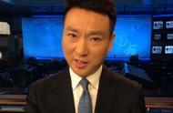 央视主播康辉:林郑特首这一问让我心疼