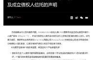 贾跃亭正式申请个人破产重组