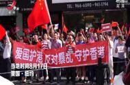 爱国护港 反对暴乱! 各地华侨华人举行集会