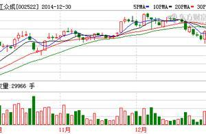 浙江众成(002522)高管持股数据一览(1-22)