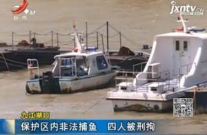 九江湖口:保护区内非法捕鱼 四人被刑拘